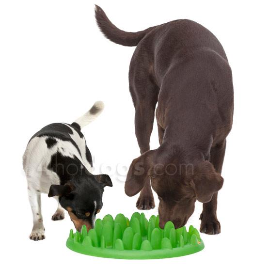 Aktiverings hundelegetøj
