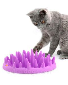 CATCH- activeringslevetøj til katte