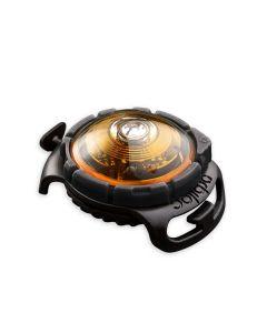 Pet Safety Light hundelygte-Gul