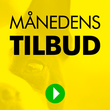 4hotdogs - Mdr-Tilbud