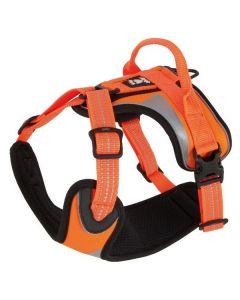 Hurtta Lifeguard Dazzle hundesele-Orange-S