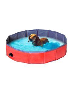 Hunde swimming Pool